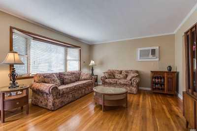 Syosset Single Family Home For Sale: 66 Hillside Ln