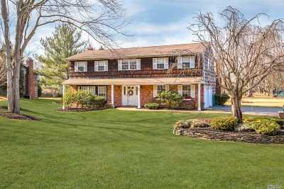 Greenlawn Single Family Home For Sale: 9a Manor (North) Rd