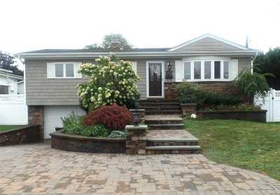 Seaford Single Family Home For Sale: 3878 Darby Ln