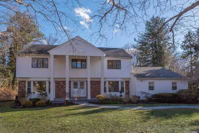 Dix Hills Single Family Home For Sale: 24 Norma Ln
