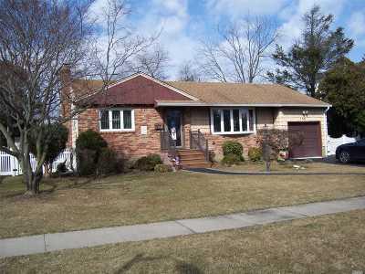 Farmingdale Single Family Home For Sale: 150 Thomas Powell Blvd
