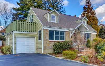 Westbury Single Family Home For Sale: 673 Westbury Ave