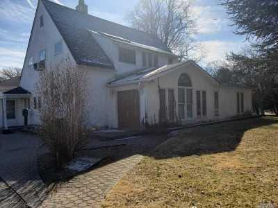 Westbury Single Family Home For Sale: 17 Avon Ln