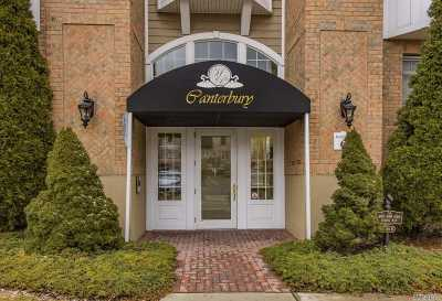 Westbury Condo/Townhouse For Sale: 406 Pacing Way