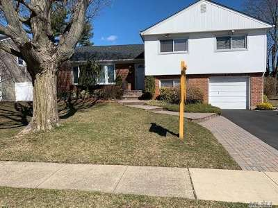 Plainview Single Family Home For Sale: 12 Stratford Rd