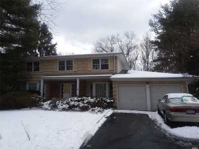 Dix Hills Single Family Home For Sale: 29 Kinsella St