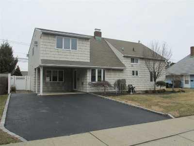 Levittown Single Family Home For Sale: 17 Coachman Ln