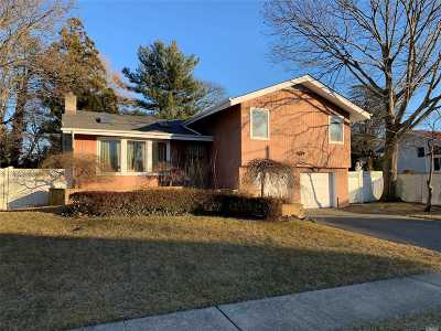 Jericho Single Family Home For Sale: 6 Forsythia Ln