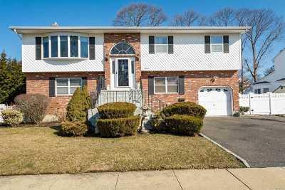 Massapequa Park Single Family Home For Sale: 11 Van Buren St