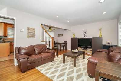 Massapequa Single Family Home For Sale: 220 N Queens Ave