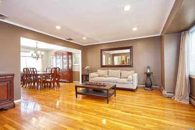 East Meadow Single Family Home For Sale: 927 Richmond Rd