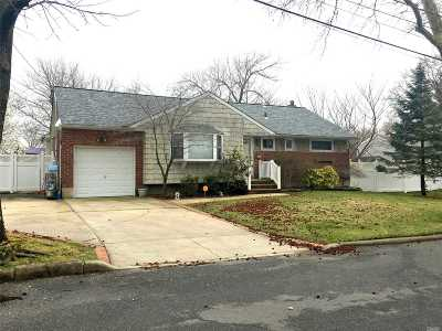 Commack Single Family Home For Sale: 10 Janet Ln