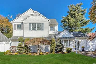 Bethpage Single Family Home For Sale: 21 Wilson Ln