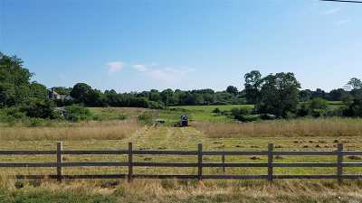 Cutchogue Residential Lots & Land For Sale: 1700 Alvah's Ln