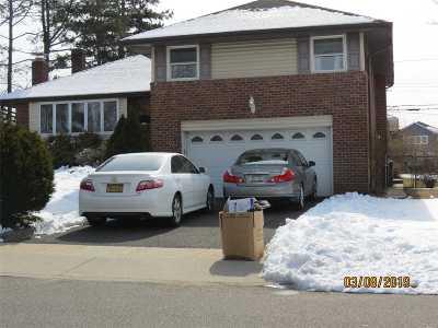 Farmingdale, Hicksville, Levittown, Massapequa, Massapequa Park, N. Massapequa, Plainview, Syosset, Westbury Single Family Home For Sale: 520 Queen St