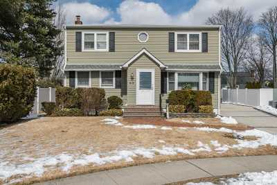 Bethpage Single Family Home For Sale: 40 Carrie Ave