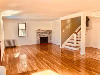 Hempstead Single Family Home For Sale: 160 Willow Ave