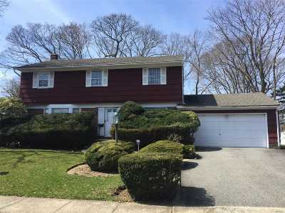 Syosset Single Family Home For Sale: 28 Park Dr