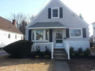 New Hyde Park Single Family Home For Sale: 544 8th Ave