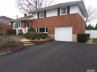 Massapequa Park Single Family Home For Sale: 43 Lourae Dr