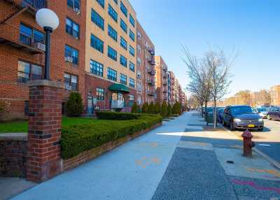Brooklyn Co-op For Sale: 160 Ocean Parkway #2H