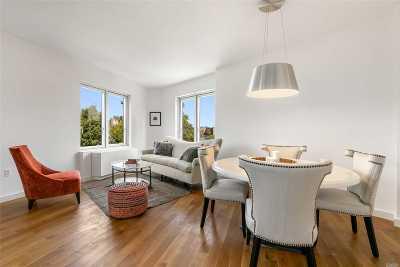 Long Island City Rental For Rent: 31-43 Vernon Blvd #617