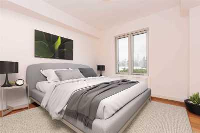 Long Island City Rental For Rent: 31-43 Vernon Blvd #313