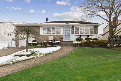 Massapequa Park Single Family Home For Sale: 88 Linden St
