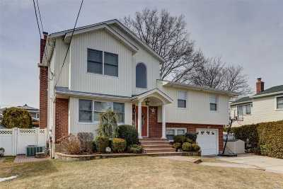 Franklin Square Single Family Home For Sale: 259 Kalb Pl