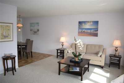 Hampton Bays Single Family Home For Sale: 44 Romana Dr