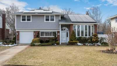 Wantagh Single Family Home For Sale: 3218 Waterbury Dr