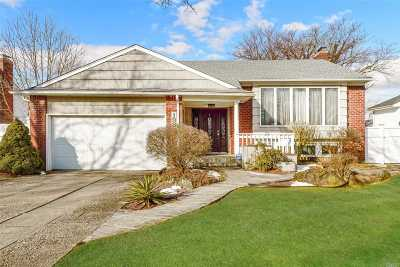 Plainview Single Family Home For Sale: 198 Roxton Rd