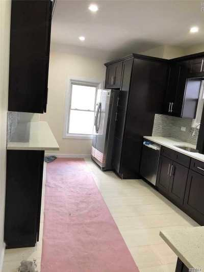 Queens Village Single Family Home For Sale: 220-16 100th Dr