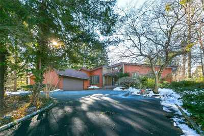 Roslyn Single Family Home For Sale: 24 The Birches