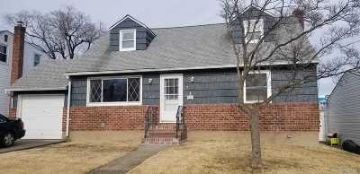East Meadow Single Family Home For Sale: 217 Belmont Ave