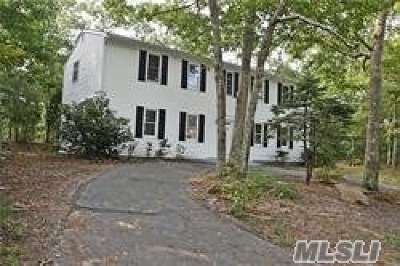 Hampton Bays Single Family Home For Sale: 4 Wards Path