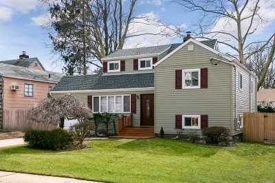 Massapequa Single Family Home For Sale: 12 Connecticut Ave