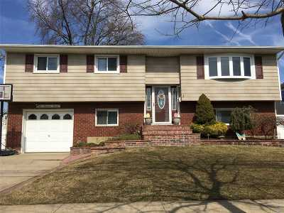 Massapequa Multi Family Home For Sale: 207 N Elm St