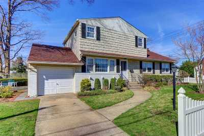 Massapequa Park Single Family Home For Sale: 169 Spruce St