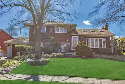 Farmingdale Single Family Home For Sale: 26 6th Ave