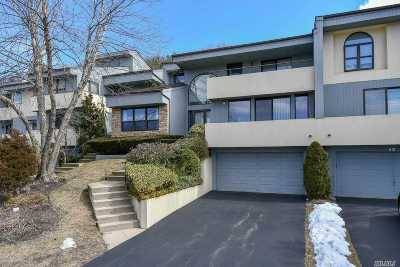 Woodbury Condo/Townhouse For Sale: Eagle Chase