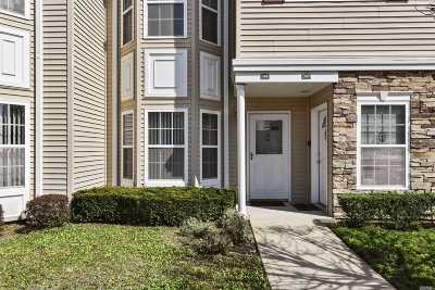 East Meadow Condo/Townhouse For Sale: 308 Spring Dr