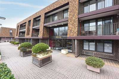 Bayside Condo/Townhouse For Sale: 209-33 26th Ave #3-C