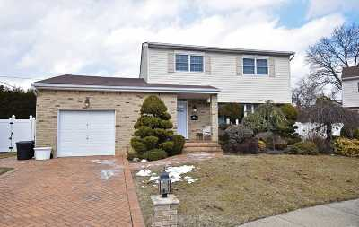 Seaford Single Family Home For Sale: 3811 Charles Ct