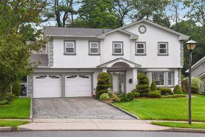 Manhasset Hills Single Family Home For Sale: 80 N Knolls Dr. N.