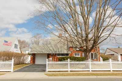 Hicksville Single Family Home For Sale: 81 Spindle Rd