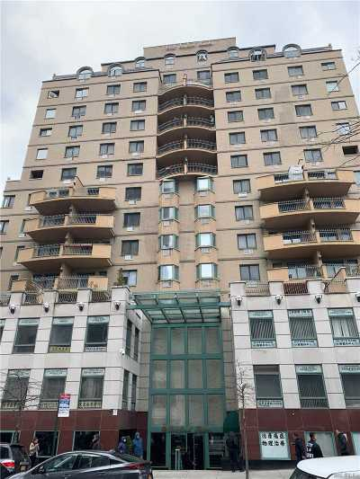 Flushing Condo/Townhouse For Sale: 133-47 Sanford Ave #13C