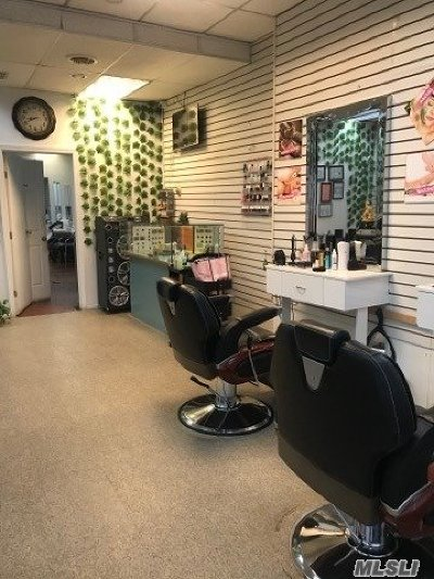 Queens County Business Opportunity For Sale: 218 Hill Side Ave