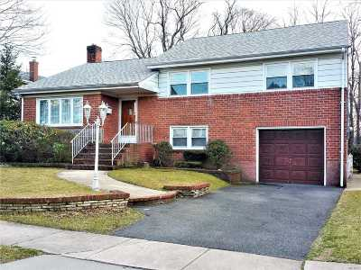 Valley Stream Single Family Home For Sale: 280 W Jamaica Ave
