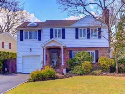 Merrick Single Family Home For Sale: 95 Grace Ave